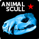 Animal 3d scull - 3DOcean Item for Sale