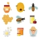 Icons Apiaries and Bee Vector - GraphicRiver Item for Sale