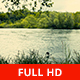 Bird and River Flowing - VideoHive Item for Sale