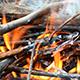 Bonfire 1 - VideoHive Item for Sale