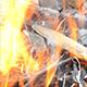 Bonfire 2 - VideoHive Item for Sale