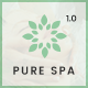 Pure - Spa & Beauty Responsive WordPress Theme - ThemeForest Item for Sale