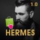 Hermes Responsive Prestashop Theme - ThemeForest Item for Sale