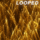 Gold Particles Rising 2 Background - VideoHive Item for Sale