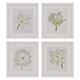 Charlotte Morgan White Watercolour Tulips - 3DOcean Item for Sale