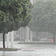 Heavy Rain, a Downpour in the City Park - VideoHive Item for Sale