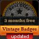 Vintage and Western Badges - GraphicRiver Item for Sale
