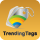 Wordpress Trending Hashtags Plugin - CodeCanyon Item for Sale