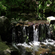 Small Waterfall Pond In Shade And Sunlight Green Plants - VideoHive Item for Sale