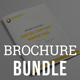 Content Marketing Brochure Bundle - GraphicRiver Item for Sale