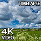 Green Field 1 - VideoHive Item for Sale