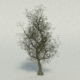 Large Tree - 3DOcean Item for Sale
