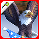 Soaring Eagle 3 - 3DOcean Item for Sale