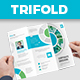 BA - Corporate Trifold Brochure - GraphicRiver Item for Sale