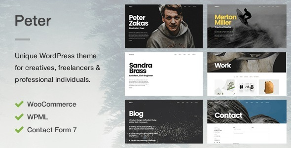 Peter - A Unique Portfolio Theme for Creatives, Freelancers & Professional Individuals