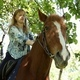 The Girl Riding a Horse - VideoHive Item for Sale