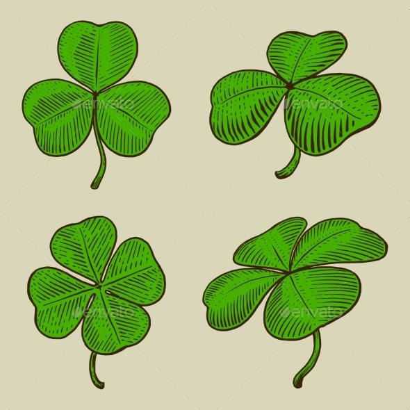 Clover Leaf Engraving Style Vector Illustration
