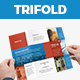 NF - Organization Trifold Brochure - GraphicRiver Item for Sale