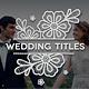 Platinum | Wedding Titles Pack - VideoHive Item for Sale