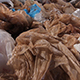 Used Plastic Bags - VideoHive Item for Sale