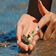 Sea Pebbles in the Palm - VideoHive Item for Sale