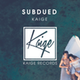 Subdued - AudioJungle Item for Sale