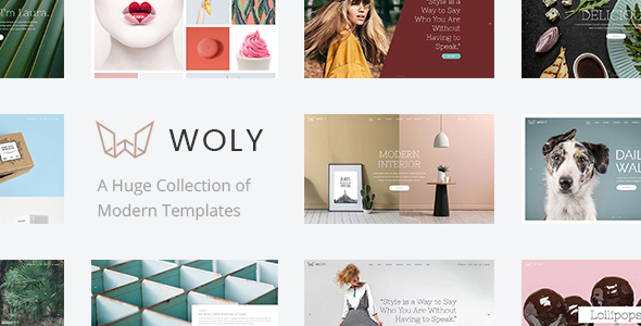 Woly - Multipurpose WordPress Theme