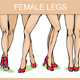 Set of Vector Woman Legs - GraphicRiver Item for Sale