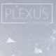 Clean Plexus Network Background - VideoHive Item for Sale
