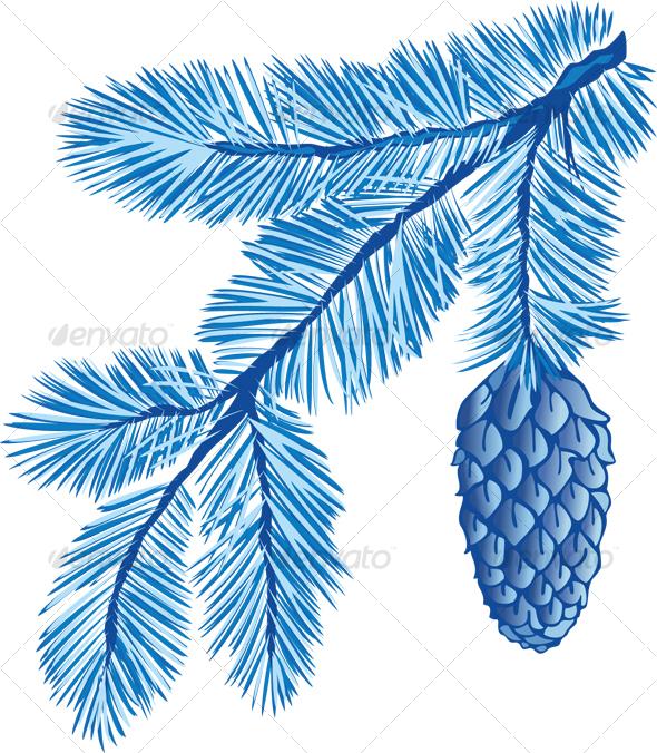 blue branch of fir-tree