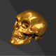 Human Skull High Poly - 3DOcean Item for Sale