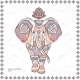 Vintage Graphic Vector Indian Lotus Ethnic - GraphicRiver Item for Sale