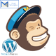 Wordpress Mailchimp Subscription Plugin - CodeCanyon Item for Sale