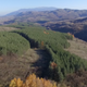 Flying Above The Forest Road Bulgaria - VideoHive Item for Sale