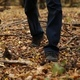 A Man Walks in Autumn Forest - VideoHive Item for Sale