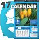 2017 Big Fresh 03 Wall n Desk Calendar Template - GraphicRiver Item for Sale