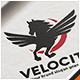 Flying Horse Logo - GraphicRiver Item for Sale