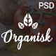Organisk - Multi-Purpose Organic PSD Template - ThemeForest Item for Sale