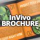 InVivo Company Brochure / Catalog Template - GraphicRiver Item for Sale