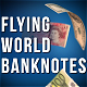 Flying World Banknotes Pack - VideoHive Item for Sale