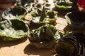 Leaf plates in Nepal - PhotoDune Item for Sale
