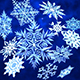 12 Pack of 3D Snowflakes - 3DOcean Item for Sale