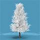 Snow Tree - 3DOcean Item for Sale