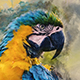 Watercolor Photoshop Action - GraphicRiver Item for Sale
