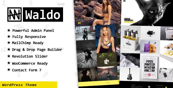 Waldo - Creative Portfolio  WordPress Theme