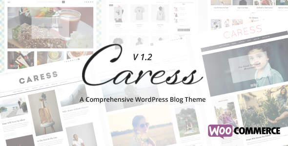 Caress - A Comprehensive WordPress Blog Theme