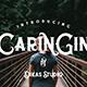 Caringin Typeface - GraphicRiver Item for Sale