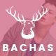 Bachas - DRAG & DROP Multipurpose Responsive Shopify Theme - ThemeForest Item for Sale