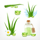 Aloe Vector Icons Set - GraphicRiver Item for Sale
