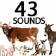 Farm Animals Sounds Pack